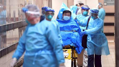 Photo of Coronavirus Outbreak Could Peak in Ten Days: Chinese Expert