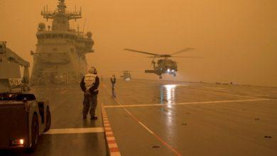 Photo of UAE to send 200 volunteers to help fight Australian bushfires