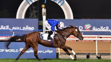 Photo of Stellar cast gathers for first Saudi Cup day