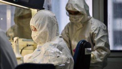 Photo of Coronavirus: UAE announces recovery of five more cases