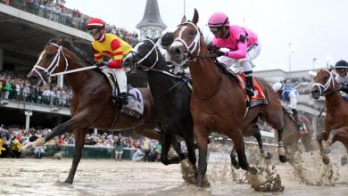 Photo of Horse racing sees day of reckoning amid doping scandal