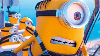 Photo of Coronavirus: 'Wicked' movie delayed, 'Minions' pushed to 2021