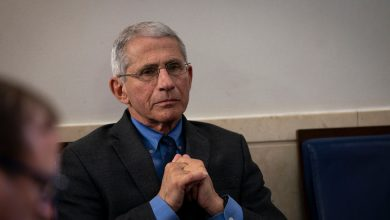Photo of Some Sports May Have to Skip This Year, Fauci Says