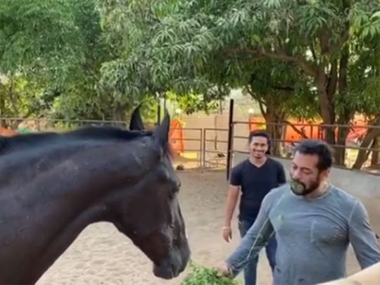 A screengrab from Salman Khan