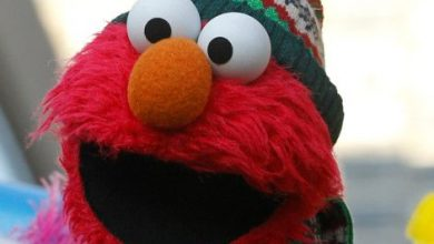 Photo of Elmo, Lin-Manuel Miranda team up for 'Sesame Street' coronavirus special