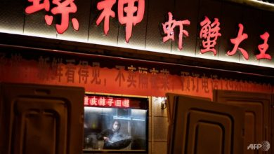 Photo of COVID-19: Chinese writer faces backlash for 'Wuhan Diary'