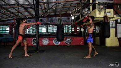 Photo of Coronavirus KO: Thai fighters in despair as rings fall silent
