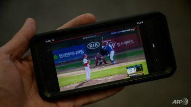 Photo of COVID-19: Baseball back as professional sport returns in South Korea