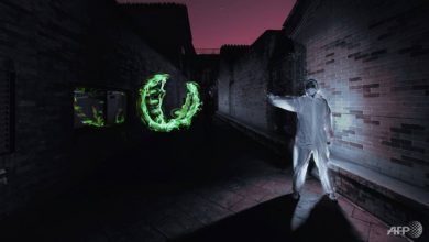 Photo of Chinese 'light painter' takes artistic inspiration from virus