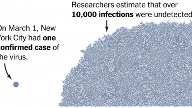 Photo of Hidden Outbreaks Spread Through U.S. Cities Far Earlier Than Americans Knew, Estimates Say