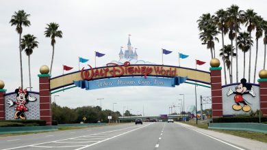 Photo of Camper on Closed Disney World Island Is Charged With Trespassing