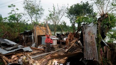 Photo of Cyclone Amphan's Toll: Tumbled Trees, Crushed Homes, Lost Lives