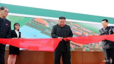 Photo of Why North Korean leader Kim Jong Un's health matters