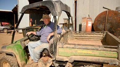 Photo of Rain brings optimism for drought-plagued Australian farmers