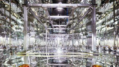 Photo of Seeking Dark Matter, They Detected Another Mystery