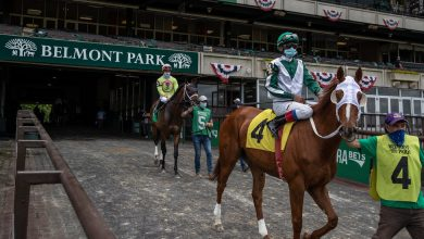 Photo of Belmont Stakes: Here's What You Need to Know
