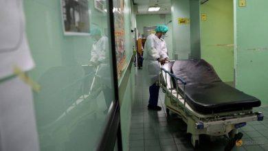 Photo of Malaysia reports 19 new coronavirus cases, 1 new death