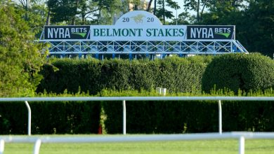 Photo of Belmont Stakes live stream: TV channel, time, lineups