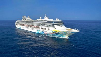 Photo of Dream Cruises to resume operations in July after COVID-19 suspension