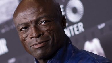 Photo of Where Has Seal Been? Watching Your Instagram Stories (and 'Plandemic')