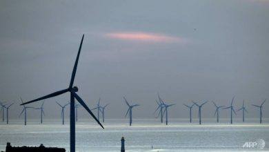 Photo of Giant offshore wind turbines could help Vietnam tackle immense climate change challenges