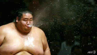 Photo of 20 sumo wrestlers rescue drowning woman in Tokyo: Reports