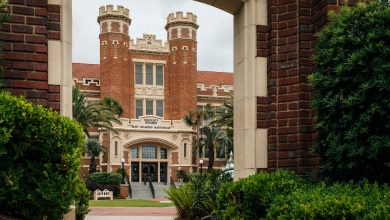 Photo of Florida State University Child Care Policy Draws Backlash