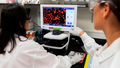 Photo of Novavax Gets $1.6 Billion for Coronavirus Vaccine From Operation Warp Speed