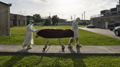 Photo of A New Surge in Virus Deaths