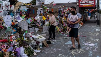 Photo of White Supremacist Who Admitted Christchurch Killings Will Represent Himself
