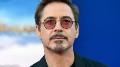 Photo of Now Robert Downey Jr. lauds 6-year-old attacked by dog