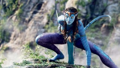 Photo of 'Avatar' delays disappoint James Cameron
