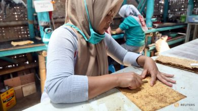 Photo of Commentary: COVID-19 will leave more young Indonesians unemployed