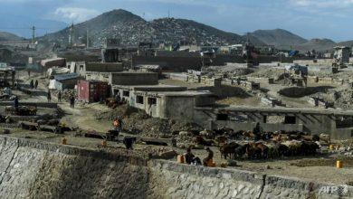 Photo of Taliban propose potential Afghan talks timeline as violence soars