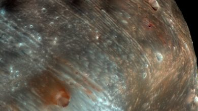 Photo of Why the 'Super Weird' Moons of Mars Fascinate Scientists