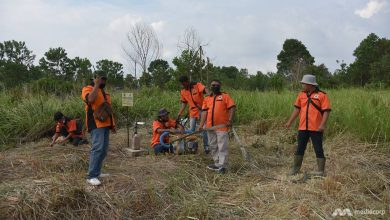 Photo of Planting crops, building wells: Local volunteers take the lead to prevent yearly peatland fires in Indonesia's Riau