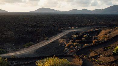 Photo of Roaming Through Lanzarote's Otherworldly Vineyards