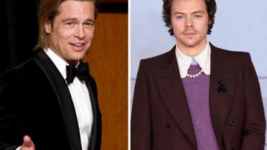 Photo of Brad Pitt, Harry Styles film won't happen, say reps