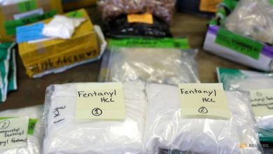 Photo of US imposes sanctions on Chinese national over fentanyl trafficking
