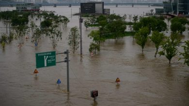 Photo of Heavy rains in South Korea displace more than 1,000 people, 13 dead