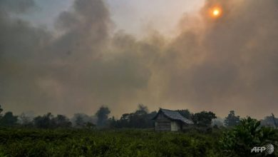 Photo of Malaysia ditches law to combat forest fire smog
