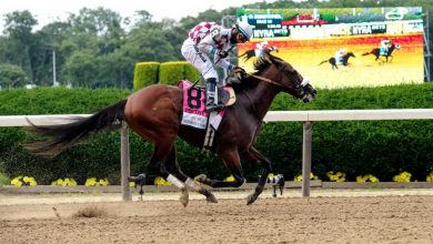 Photo of 2020 Travers Stakes Betting Preview: Can Caracaro Challenge Tiz the Law?