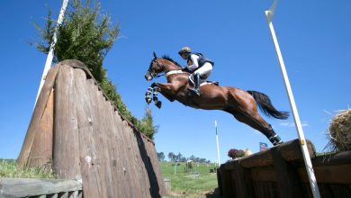 Photo of Estate's Racially Divisive Name Threatens Future of Premier Equestrian Event