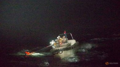 Photo of No sign of crew missing near Japan after cattle ship capsizes in storm