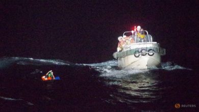 Photo of Japan coastguard rescues one person in search for missing New Zealand livestock ship
