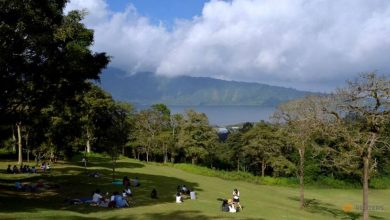 Photo of COVID-19: Indonesia gives free Bali staycations to test tourism readiness