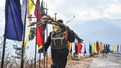 Photo of Bhutan's tree warrior: Spreading life in the world's most climate conscious nation