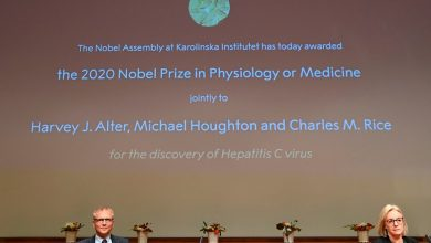 Photo of Nobel Prize in Medicine Awarded to Scientists Who Discovered Hepatitis C Virus