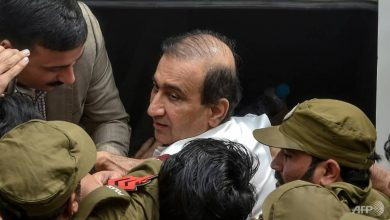 Photo of Pakistan media mogul granted bail after months in prison